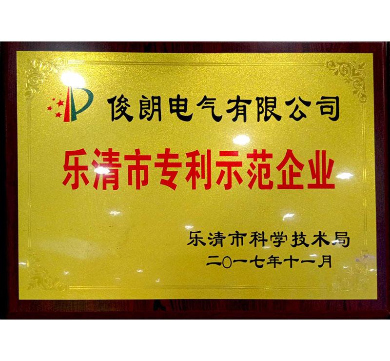 2017乐清市专利示范企业-乐清科学技术局